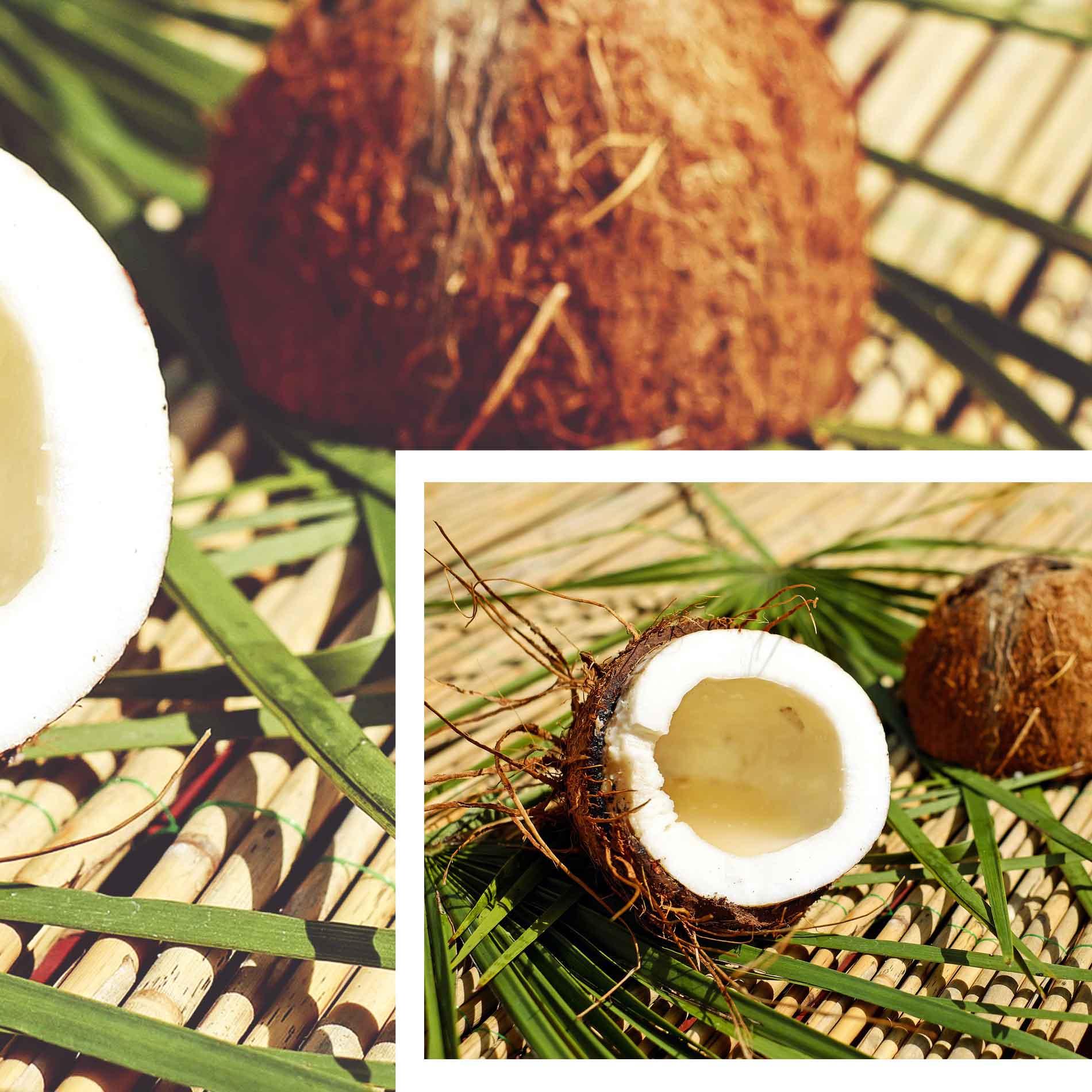 Kokosnuss und Kokosöl, Beauty Hacks, Kokosöl für die Gesundheit, Gesundheitstipps, Kokosöl für äußere Anwendung, Kokosöl für innere Anwendung, Superfood Kokosöl, Superfood Kokosnuss, natürliche Superfoods,