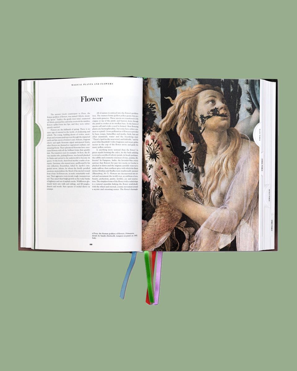 Das Buch der Symbole, Buchtipp, Buch, Symboldeutung, Mystik, Kultur, Gescichte, Inner Beauty, Bücher zur Symboldeutung